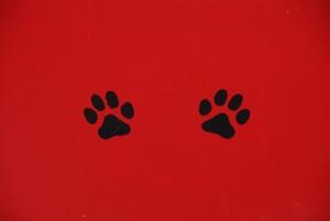 Pintacaras fáciles de la patrulla canina